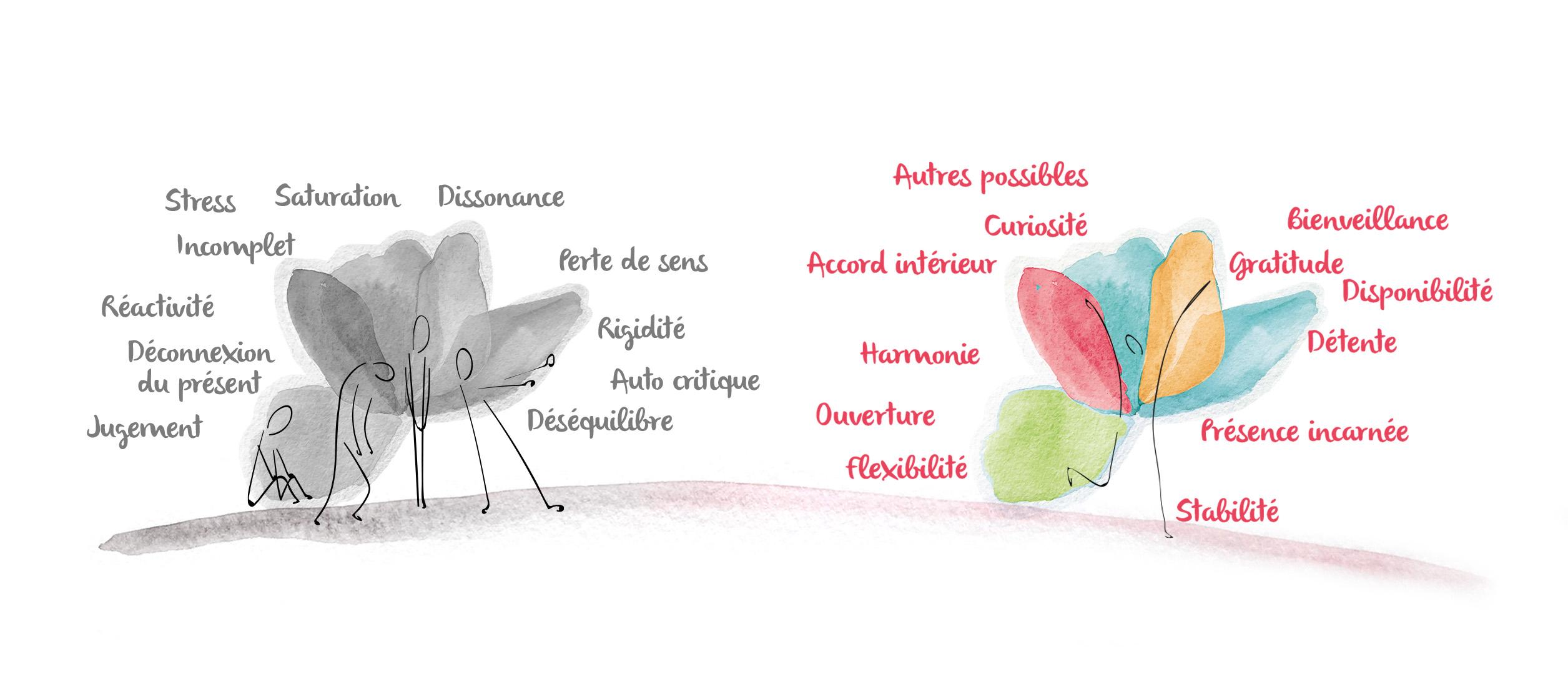 illustration-motivations-evolutions-pleine-conscience